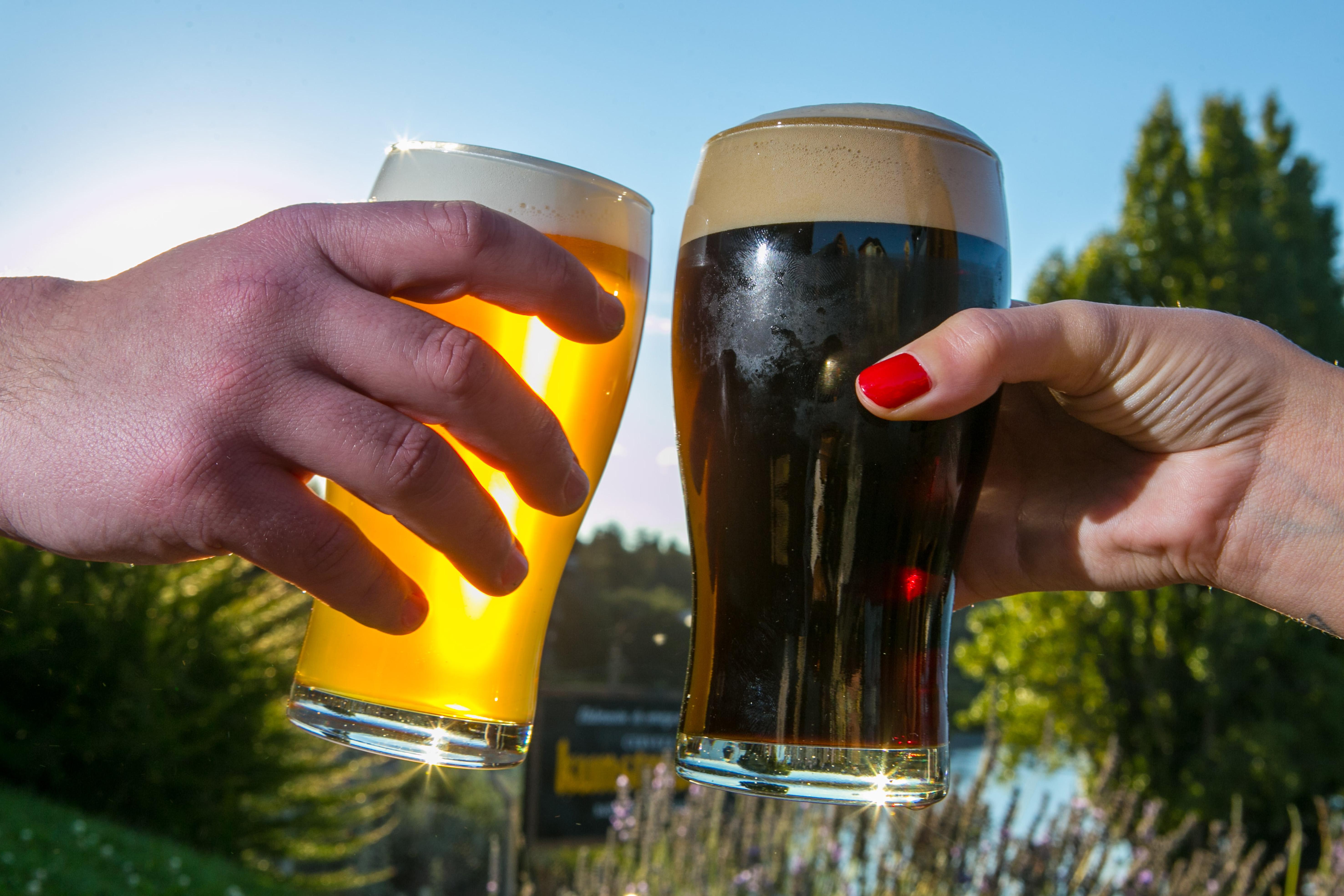 Pinta Bariloche. Fiesta de la Cerveza Artesanal